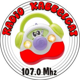 radiokabbelgat2016 klein